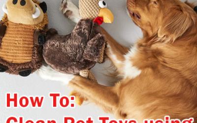 Clean Pet Toys