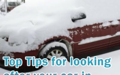 Winter Car Guide